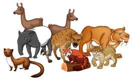 Groupe d'animaux sauvages Illustration Libre de Droits