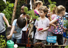 Groupe d'enfants de jardin d'enfants apprenant le jardinage dehors Photos stock