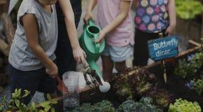 Groupe d'enfants de jardin d'enfants apprenant le jardinage dehors Photographie stock libre de droits