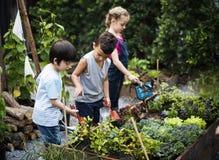 Groupe d'enfants de jardin d'enfants apprenant le jardinage dehors Image libre de droits