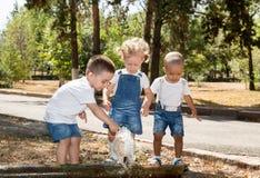 Groupe d'enfants heureux jouant en parc Nature d'été Photographie stock libre de droits