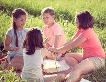 Groupe d'enfants jouant sur l'herbe Image libre de droits