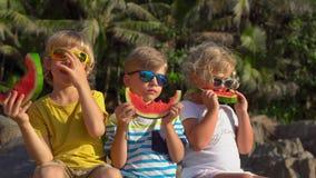 Groupe d'enfants mangeant la past?que se reposant sur une plage tropicale Concept d'enfance Concept d'?t? banque de vidéos