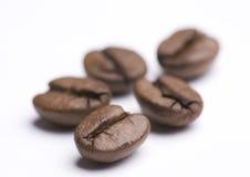 Groupe d'haricots de Cofee sur le blanc Photographie stock
