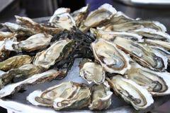 Groupe d'huîtres photos stock