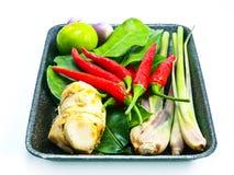 Groupe d'ingrédients de Tomyum (nourriture thaïlandaise) Photos libres de droits