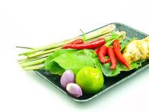 Groupe d'ingrédients de Tomyum (nourriture thaïlandaise) Photo stock