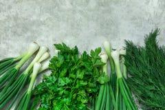Groupe d'oignons blancs frais d'aneth de persil de verdure d'herbes de jardin sur le fond de Grey Cement Concrete Metal Stone Ali photos stock