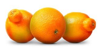 Groupe d'oranges et de mandarines d'isolement sur le blanc Photographie stock
