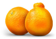 Groupe d'oranges et de mandarines d'isolement sur le blanc Photos stock