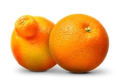 Groupe d'oranges et de mandarines d'isolement sur le blanc Photo stock