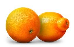 Groupe d'oranges et de mandarines d'isolement sur le fond blanc Photo stock