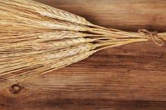 Groupe d'oreilles de blé Images stock