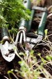 Groupe d'outils de jardinage Photographie stock