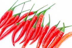Groupe d'un rouge ardent de poivre de piment Images libres de droits