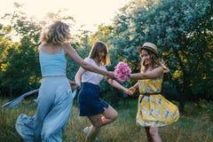 Groupe de amies rendant le pique-nique extérieur Photo libre de droits