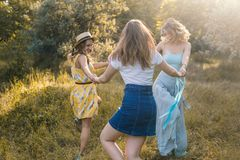 Groupe de amies rendant le pique-nique extérieur Photographie stock libre de droits