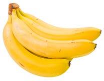 groupe de banane Images libres de droits