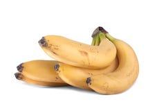 groupe de bananes Images libres de droits
