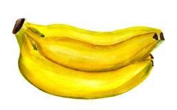 Groupe de bananes Photos libres de droits