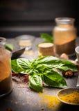 Groupe de basilic sur un fond des herbes et des épices pour la cuisson Image libre de droits