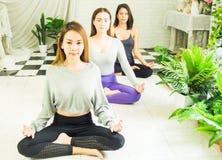 Groupe de belles femmes dans des classes de yoga et de m?ditation pour r?g?n?rer l'esprit et l'esprit, avec le concept de la rela image libre de droits