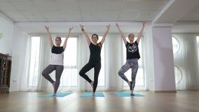 Groupe de belles femmes exerçant la formation saine de yoga de mode de vie banque de vidéos