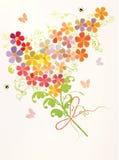 Groupe de belles fleurs Photographie stock libre de droits