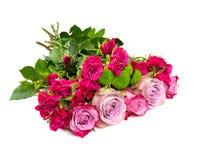 Groupe de belles roses photos libres de droits
