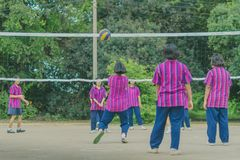 Groupe de bonheur d'amis adolescents jouant le volleyball Images stock
