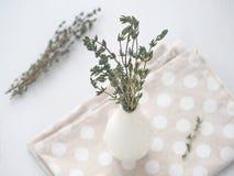 Groupe de brins de thym dans le petit vase blanc au-dessus du fond en bois blanc photos libres de droits