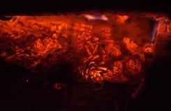 Groupe de cônes de sapin brûlants la nuit image stock