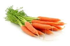 Groupe de carottes Photo libre de droits