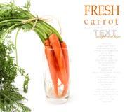 Groupe de carottes de bébé Photo libre de droits