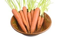 Groupe de carrotts dans une cuvette Images stock