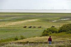 Groupe de cavaliers sur Sylt Photos libres de droits