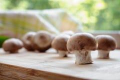 Groupe de champignons sur une table de cuisine Photographie stock libre de droits