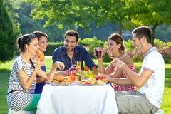 Amis appréciant un repas extérieur sain Photographie stock