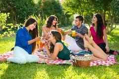 Groupe de cinq amis avec des boissons sur une couverture Photo stock