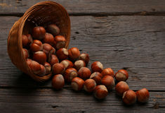 Groupe de coquilles de noix délicieuses dans une cuvette Image stock