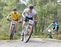 Groupe de cyclistes de vélo de montagne dans la vue forestRear du groupe Images libres de droits