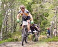 Groupe de cyclistes masculins de vélo de montagne dans la forêt Photo libre de droits