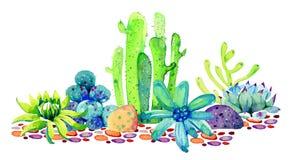 Groupe de différents cactus et succulents sur des pierres Illustration tirée par la main de croquis de couleur d'aquarelle photos libres de droits