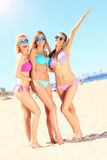 Groupe de femmes ayant l'amusement sur la plage Photos libres de droits