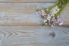 Groupe de fieldflowers, marguerites, renoncules, fleurs de la pentecôte, pissenlits sur un fond d'oldwooden avec l'espace vide de Image libre de droits