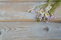 Groupe de fieldflowers, marguerites, renoncules, fleurs de la pentecôte, pissenlits sur un fond d'oldwooden avec l'espace vide de Photos stock