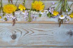 Groupe de fieldflowers, marguerites, renoncules, fleurs de la pentecôte, pissenlits sur un fond d'oldwooden avec l'espace vide de Photographie stock libre de droits