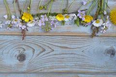 Groupe de fieldflowers, marguerites, renoncules, fleurs de la pentecôte, pissenlits sur un fond d'oldwooden avec l'espace vide de Images libres de droits