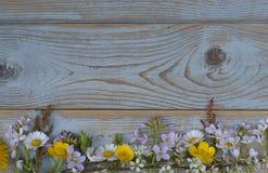 Groupe de fieldflowers, marguerites, renoncules, fleurs de la pentecôte, pissenlits sur un fond d'oldwooden avec l'espace vide de Image stock