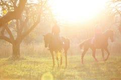 Groupe de filles de cavalier marchant avec des chevaux en parc Image libre de droits